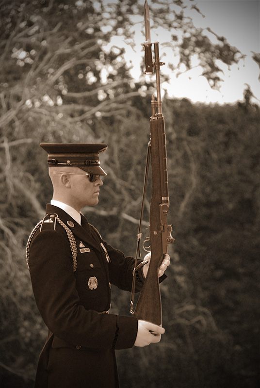 Honor Guard II